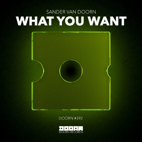 poster for What You Want - Sander van Doorn
