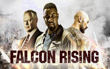 screenshoot for Falcon Rising