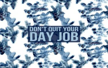 screenshoot for Don't Quit Your Day Job