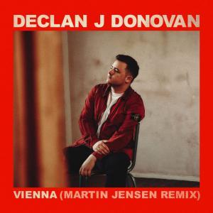 poster for Vienna (Martin Jensen Remix) - Declan J Donovan