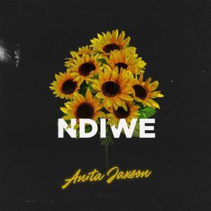 poster for Ndiwe - Anita Jaxson