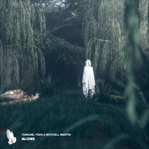 poster for Alone (feat. Mitchell Martin) - Tomline & YZKN