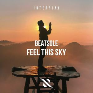 poster for Feel This Sky - Beatsole