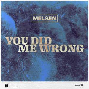 poster for You Did Me Wrong - Melsen