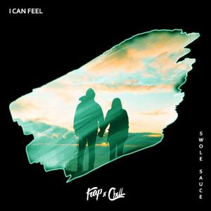 poster for I Can Feel - Swole Sauce