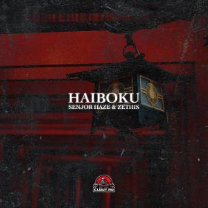 poster for Haiboku - Senjor Haze & Zethis