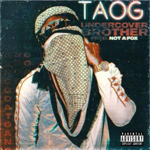 poster for Undercover Brother - Taog