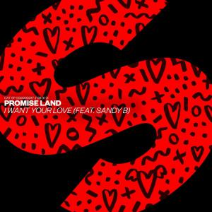 poster for I Want Your Love (feat. Sandy B) - Promise Land