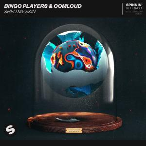 poster for Shed My Skin - Bingo Players & Oomloud