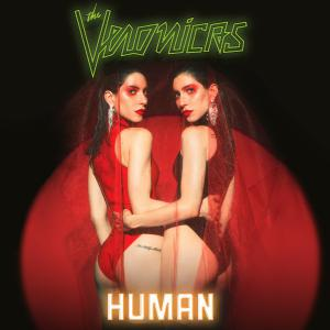 poster for Goodbye - The Veronicas