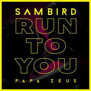 poster for Run To You - Sam Bird, Papa Zeus