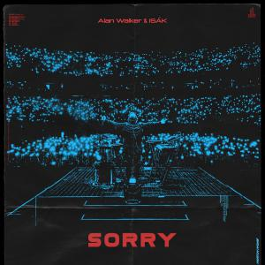 poster for Sorry (feat. ISÁK) - Alan Walker