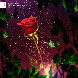 poster for You're Not (feat. Mitchell Martin) - Despotem & Tomline
