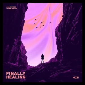 poster for Finally Healing - Abandoned & Shiah Maisel