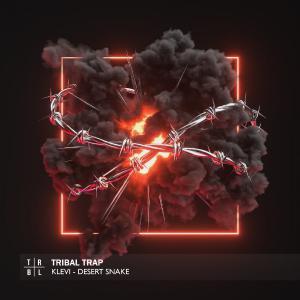 poster for Desert Snake - Klevi