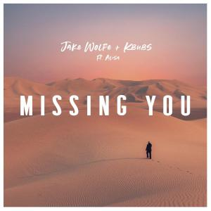 poster for Missing You (feat. Alisa) - Jake Wolfe & Kbubs