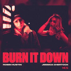 poster for Burn It Down - Robin Hustin & Jessica Chertock
