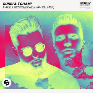 poster for Make Amends (feat. Kyan Palmer) - Curbi & Tchami