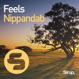 poster for Feels - Nippandab