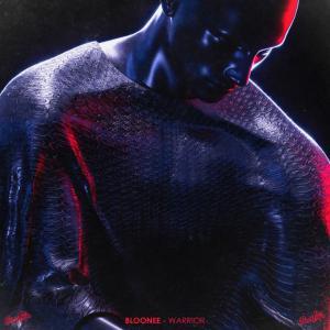 poster for Warrior - BLOONEE