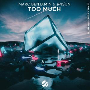 poster for Too Much - Marc Benjamin & Ansun