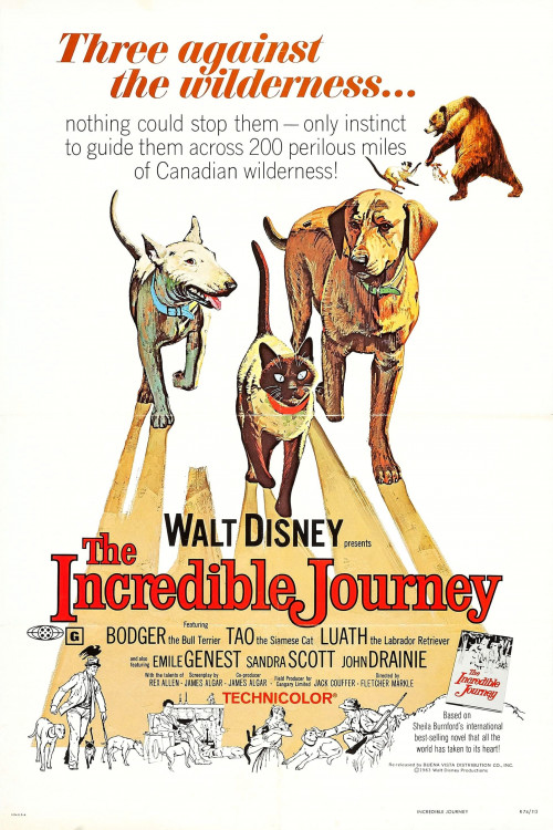 The Incredible Journey 1963